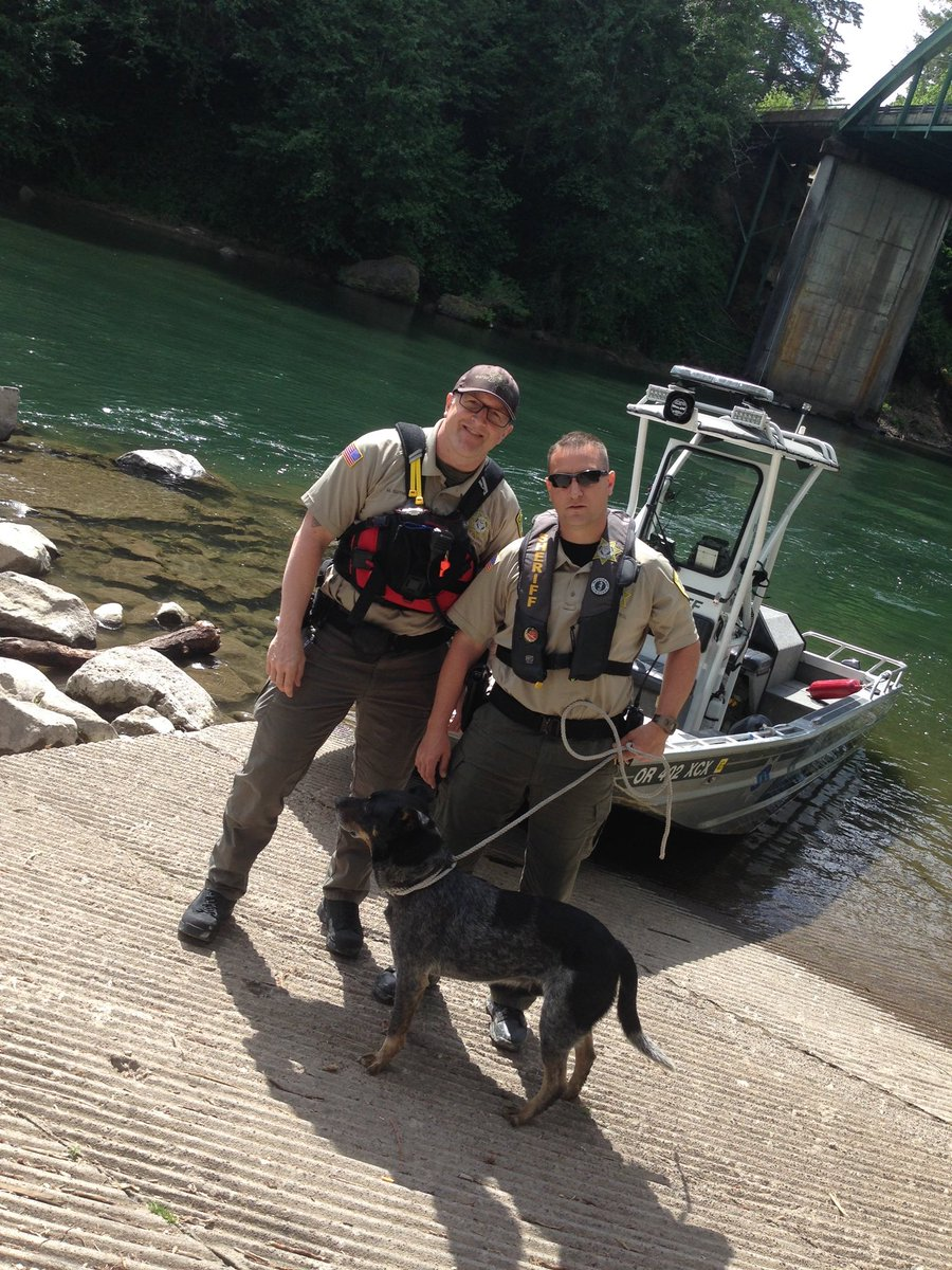 We need your help finding the owners of this dog. Rescued from the Clackamas River today thanks to deputies https://t.co/aA55Uidkkr