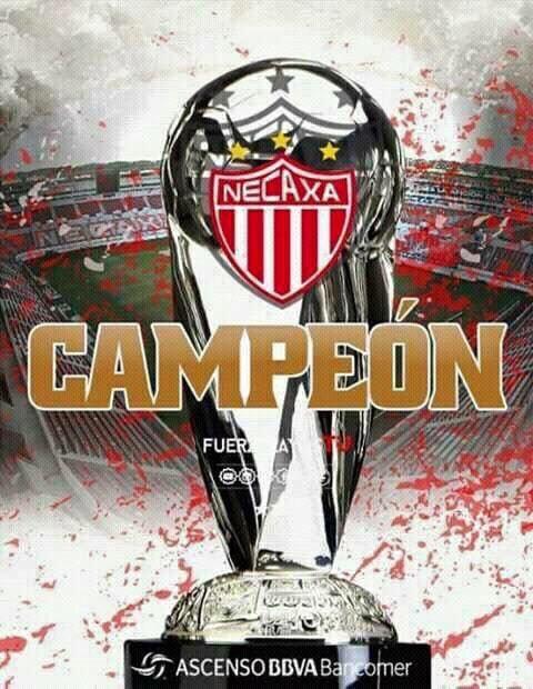 ...Felicidades @ClubNecaxa y a todos los⚡️por este campeonato