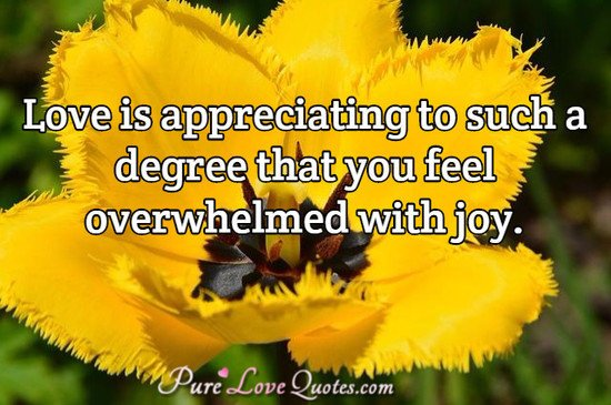 Pure Love Quotes On Twitter Love Is Appreciating To Such A Degree