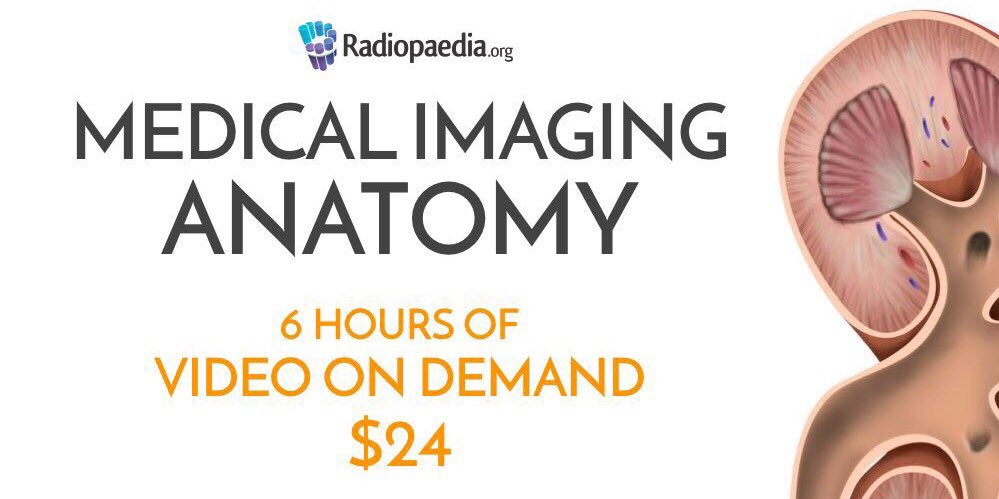 Radiology Signs On Twitter Low Cost Online Anatomy Course Rego