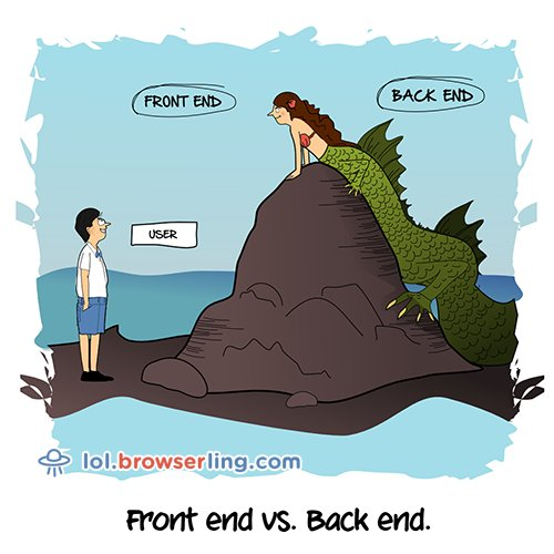 Full Stack – Cartoons and jokes about front end and back end developers