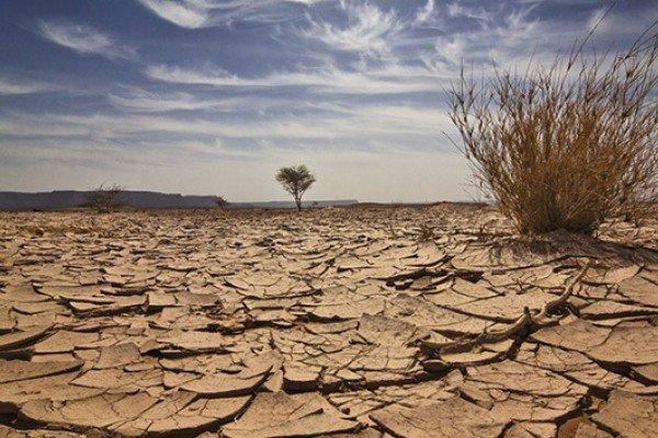 Erosionado, 55% del territorio mexicano