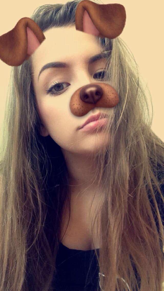 Dog Filter Dog Filter Twitter