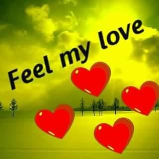 Allu Arjun My God On Twitter Feel My Love Bunny Eppudu Any Where