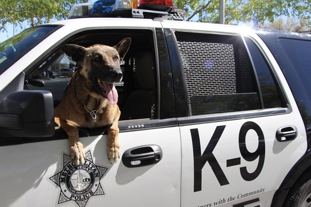 There's officially a beer named for a Metro K9 killed in a shootout