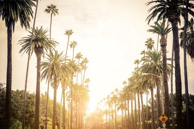 Image result for sunny LA