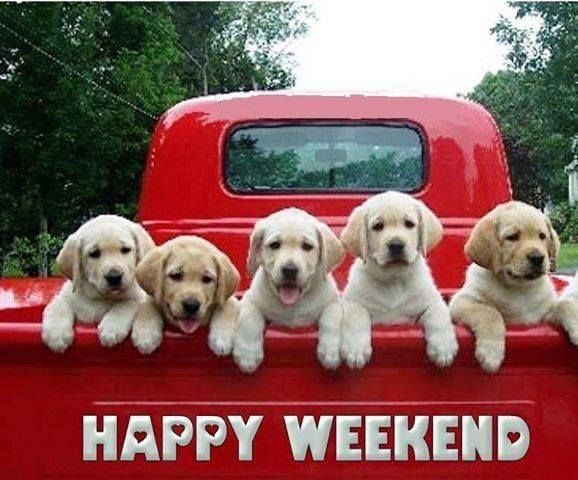 Image result for happy weekend images