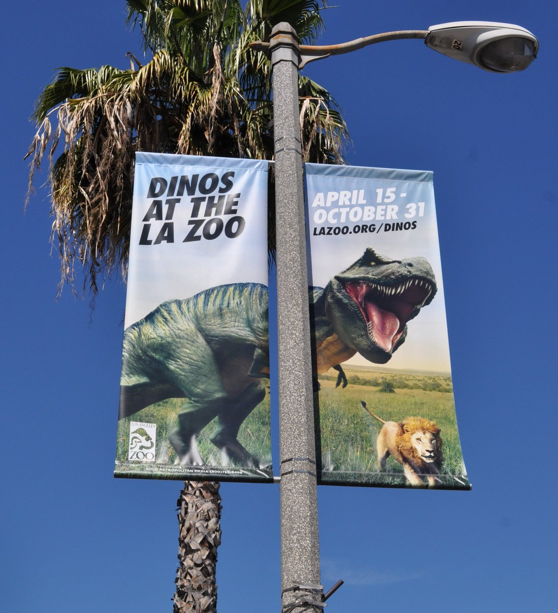 Los Angeles Zoo And Botanical Gardens On Twitter Rt
