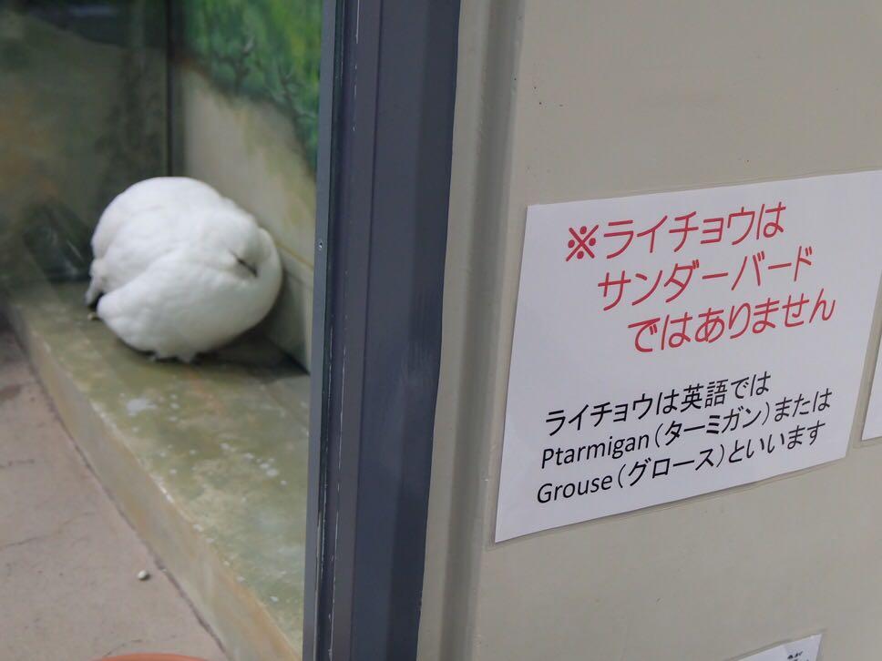 JRの駅でも使えるんだよなぁ(笑) RT @aya_no アッハイ