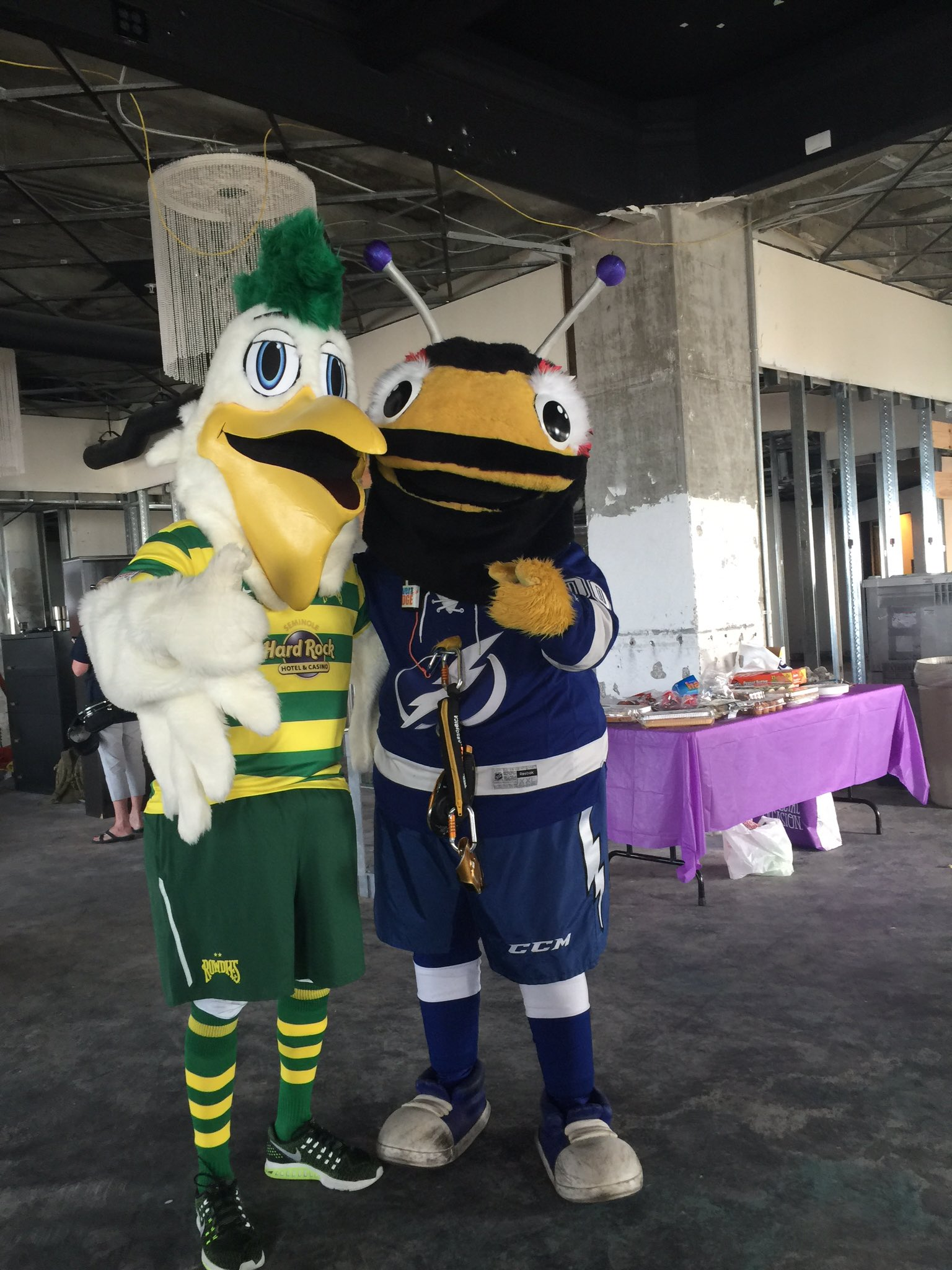 tampa bay rowdies y on twitter pete the pelican and tblightning s lightning bug getting ready to repel off the priatek plaza building in st pete tampa bay rowdies y on twitter pete
