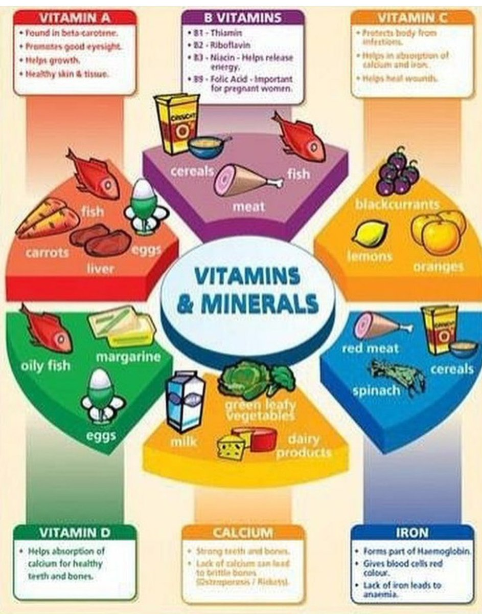 What is a Balanced Diet and Why is it Important?