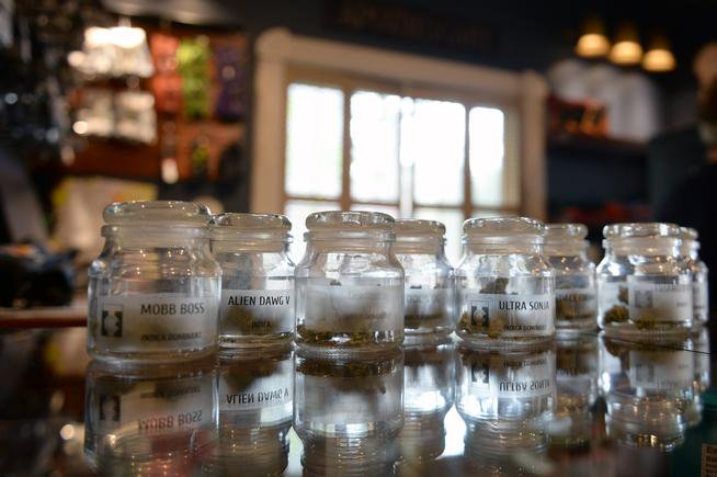 Colorado tourists may soon be able to buy as much marijuana as residents