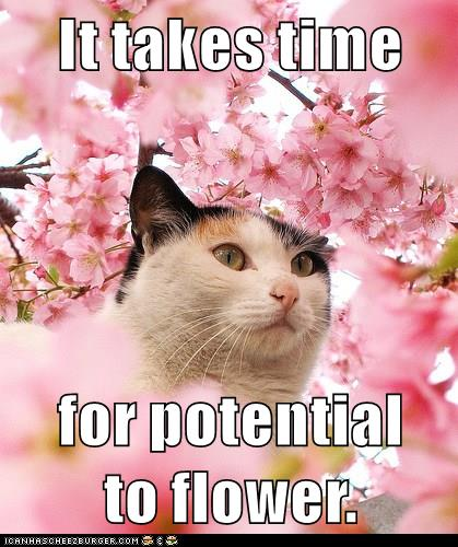 For May Social Media Challenge, a May Day #growthmindset cat: https://t.co/nE8olnmTg8 #ContentCandace #MindsetPlay https://t.co/LTJWxDP8Mz