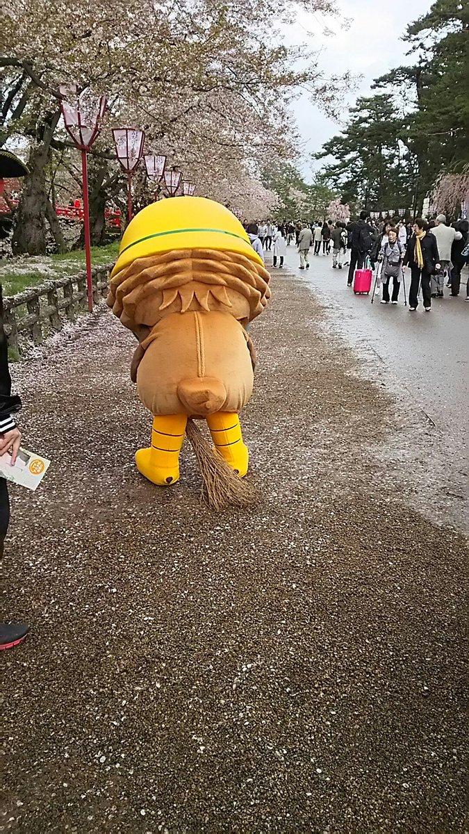 おはまるっ(●'ω'●)さくらまつりも後半になってきたねぇ!まつり期間中のぼくのお散歩も3日4日5日の残り三日間だよぉ(´・ω・`)今日のヒトコマはりんご飴マンがふらいんぐうぃっちの舞台巡りをしていて公園でばったり!ほうきで飛べt https://t.co/shukLG6cb6