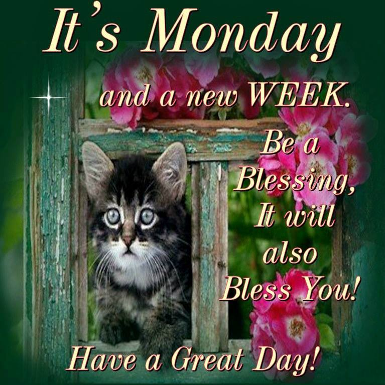 His Cornerstone Llc On Twitter Good Morning Happy Monday I Pray