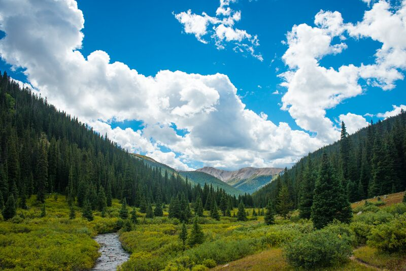 """Going to the mountains is going home; wildness is a necessity""—#JohnMuir #Hiking #SummerIsComing #Aspen #GetOutside https://t.co/TdxG1b5GAS"