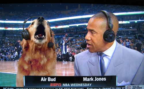 one time ESPN had Air Bud on to do commentary on a basketball game and it was insane