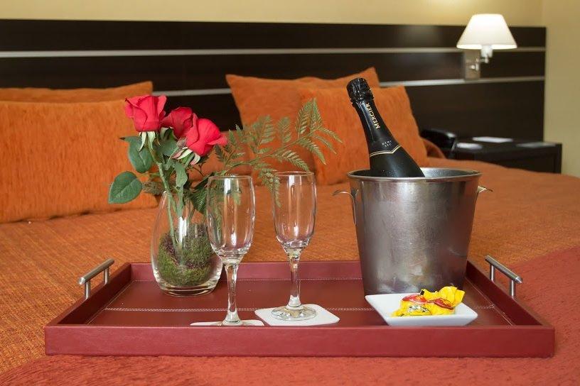 Servicios Hotel Francia