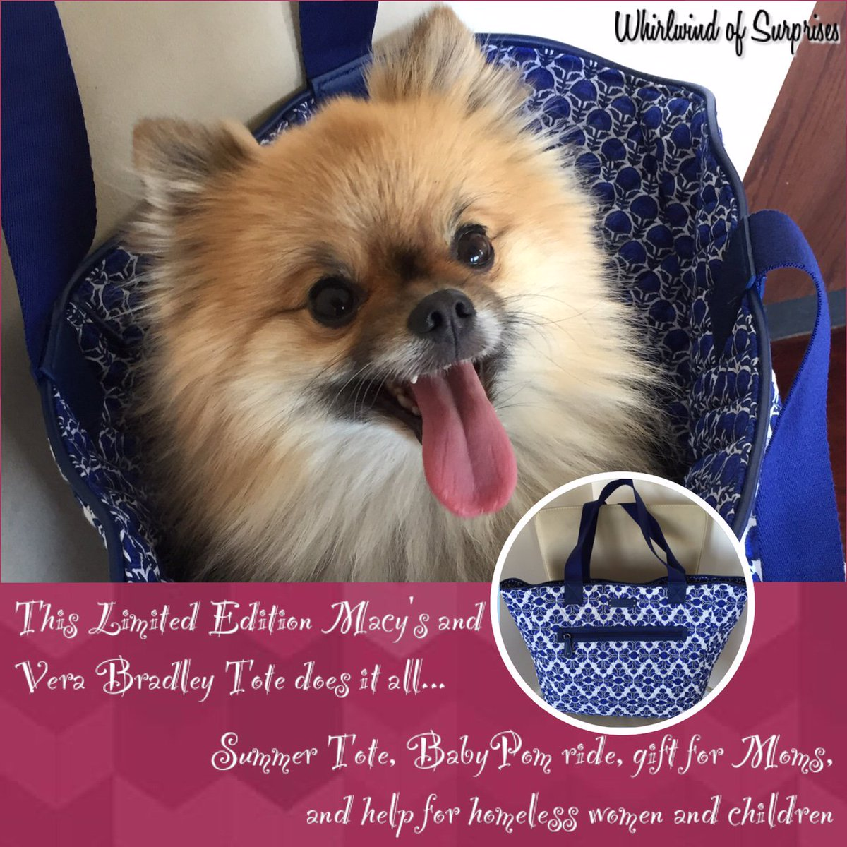 Vera Bradley and Macy's Limited Edition Tote for Mother's Day