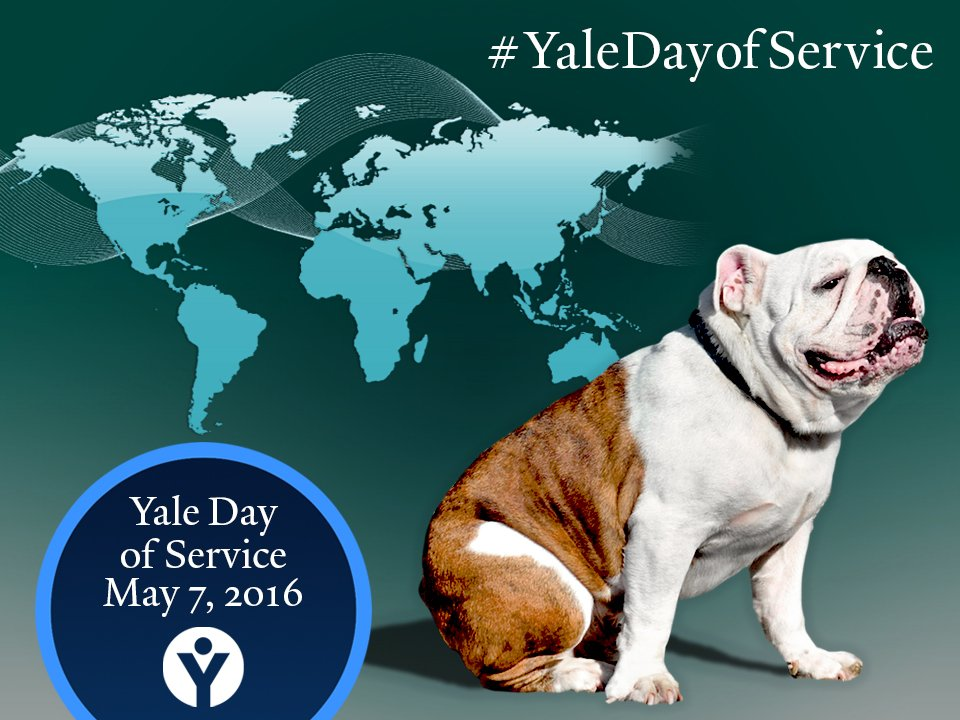 Today is #yaledayofservice! Share your experience: https://t.co/5kPhL3Cwbd https://t.co/7nQCsjrowf