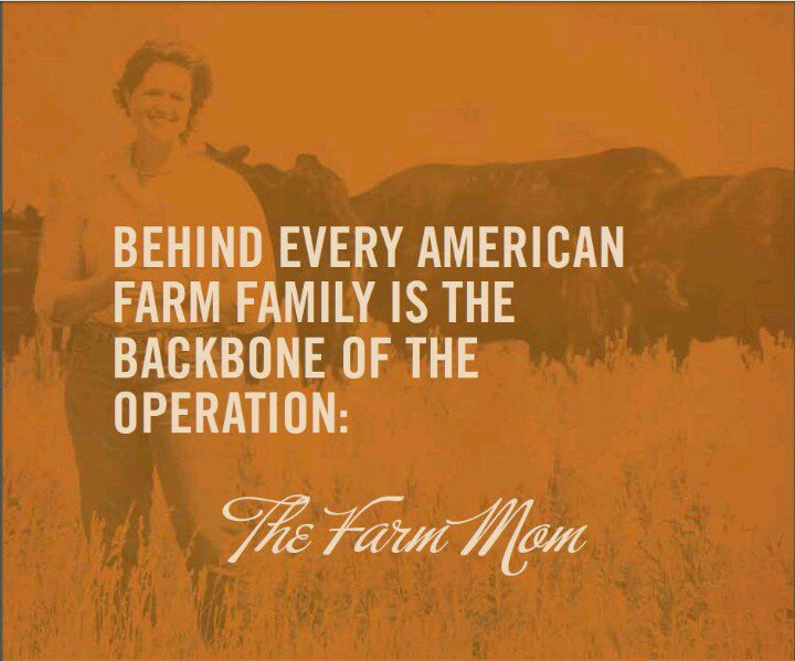the foundations of agriculture in the american family The financial well-being of american families requires both short-term financial stability and longer-term  economic mobility family finances fiscal & economic.
