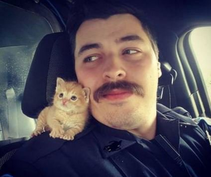 A police officer rescued a kitten and the two became buddies