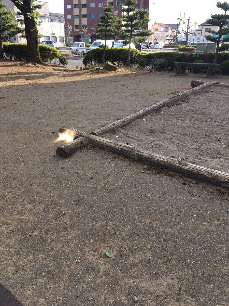 息子を公園に連れていったら砂場のところに木漏れ日のせいでRPGの重要アイテムが落ちてるみたいな状態になった箇所があった。近づいて見てみたら雑草が生えてた。