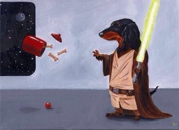 May The Fourth Be With You https://t.co/wYxoZBJHTI