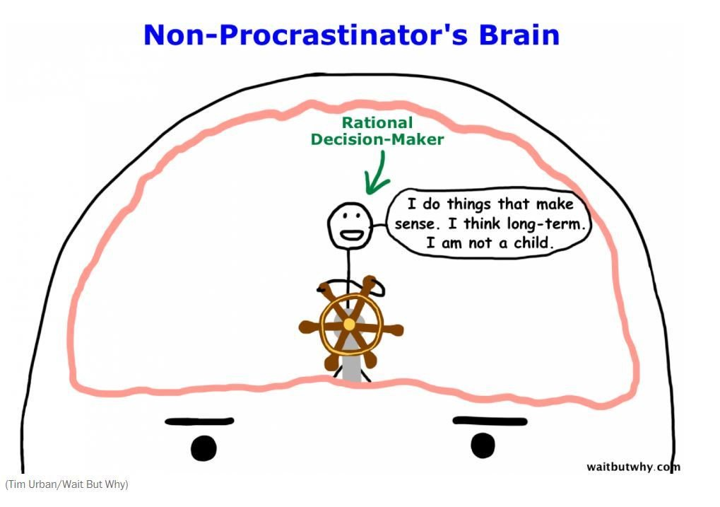 World economic forum on twitter the real reasons you procrastinate 931 am 4 may 2016 ccuart Gallery