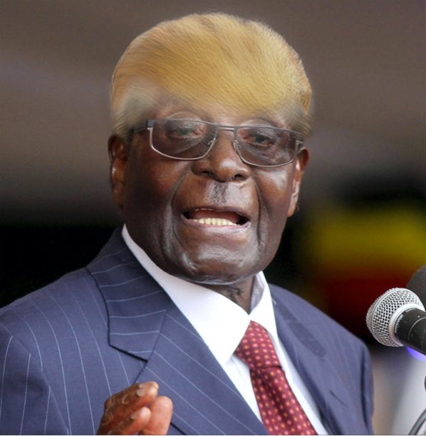 Robert Mugabe (@RGMugabe) | Twitter