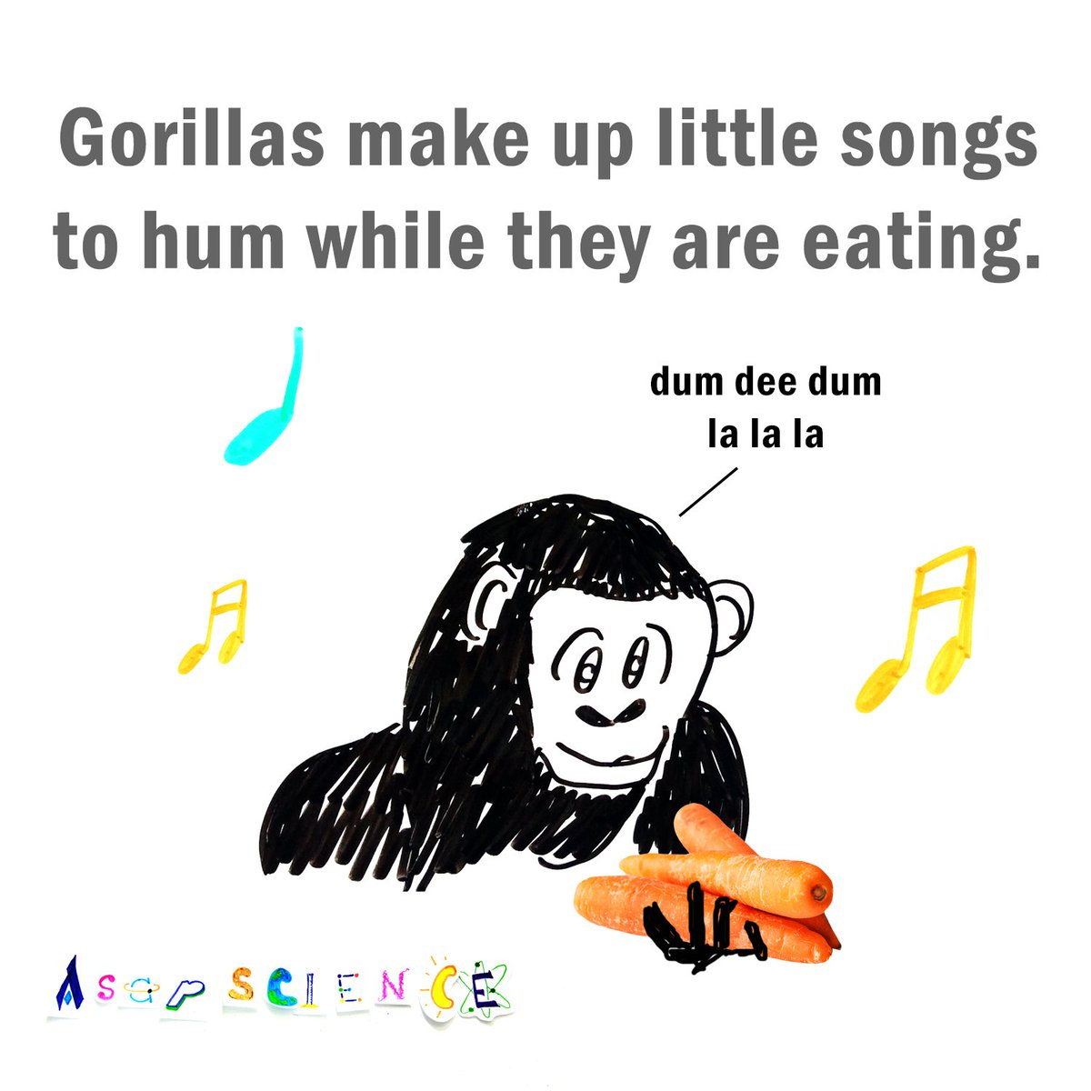 asapscience on twitter gorillas make up little songs to hum while