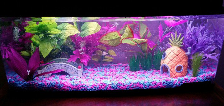 Wow 10 cool fish tank decoration ideas how to copy them for Cool fish tank themes
