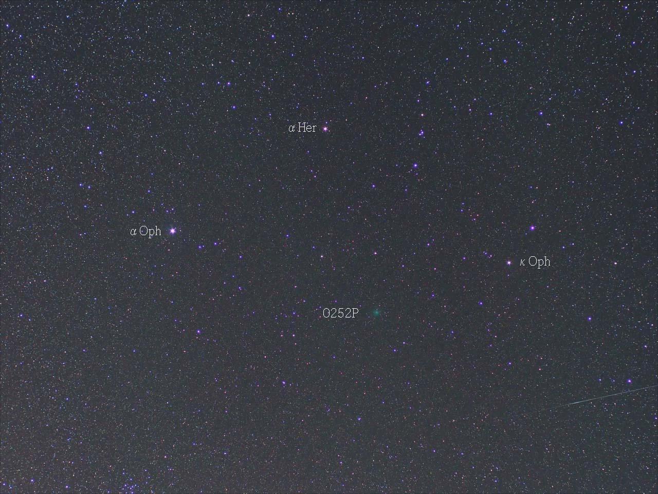 彗星と流星。明け方晴れたら見えるかも?