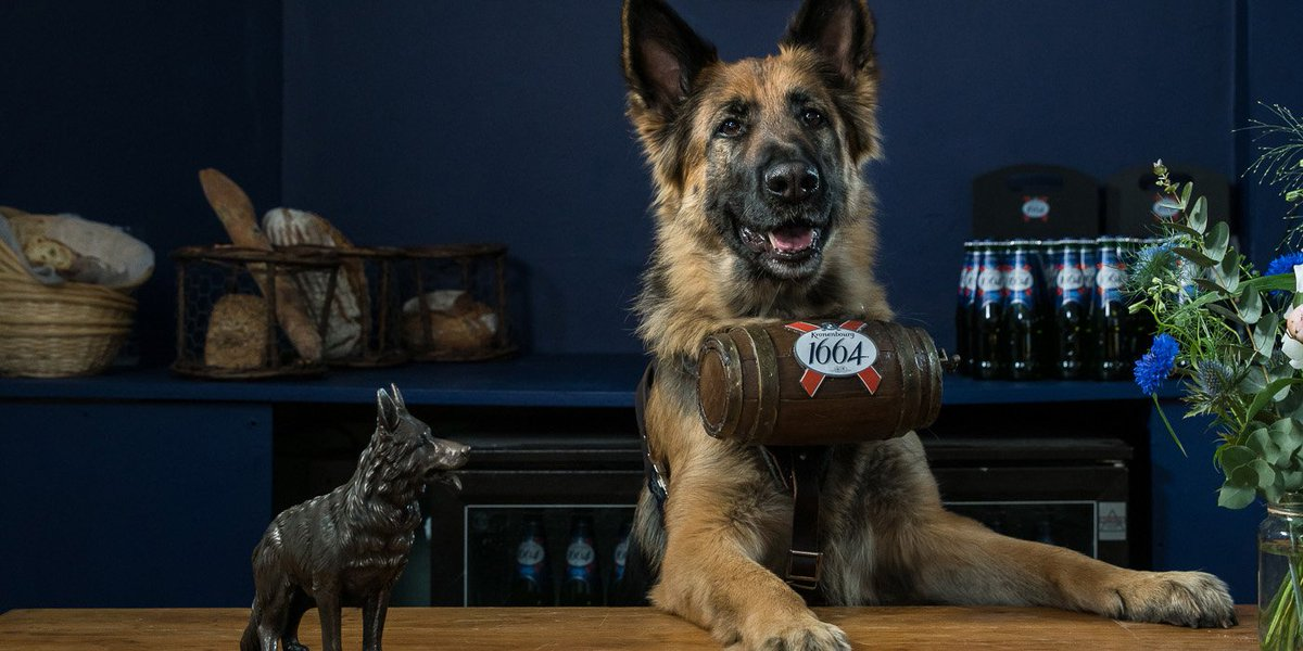 A cold Kronenbourg 1664 served by an Alsace-tian dog? Oui! To win a table for 4 on Fri tweet us your deserving mates https://t.co/2pcNIYB3tC