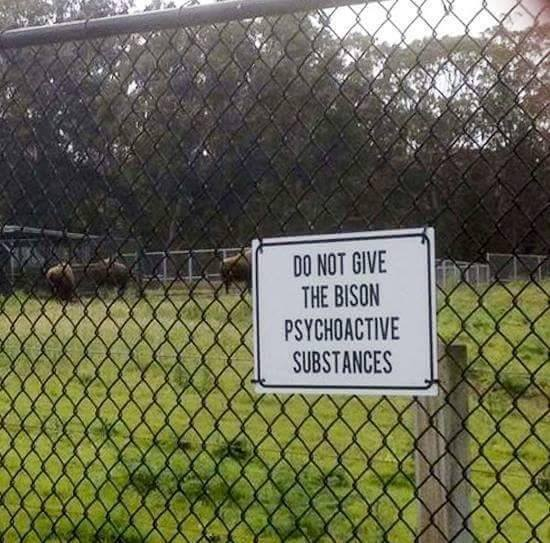 I wanna know what's happened in the past that someone felt this sign was necessary. https://t.co/u2zLPHeHNk