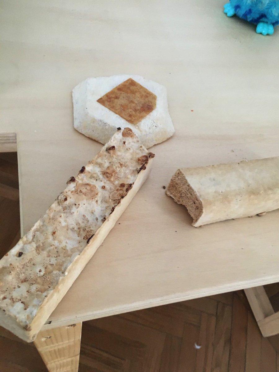 Mushroom-made packaging material. #FabLab #CasaJasmina https://t.co/ULojWWGoLM