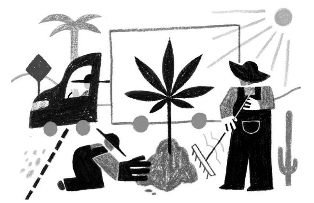 Legalized Pot, Free Trade