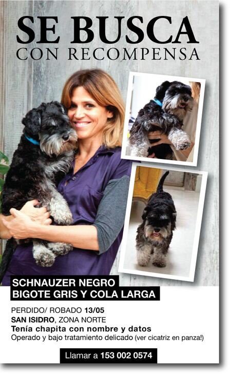 Ayudemos a @FreytesMaria a encontrar a su perrito q esta en tratamiento! RT RT RT furioso https://t.co/M0P5XQorz0