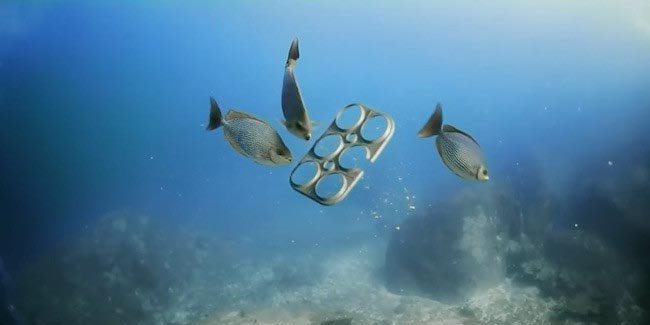 Six-pack rings that feed fish instead of killing them? Cheers to this idea! https://t.co/NymFz2AChE @UPROXX https://t.co/3VXB0PYmLZ