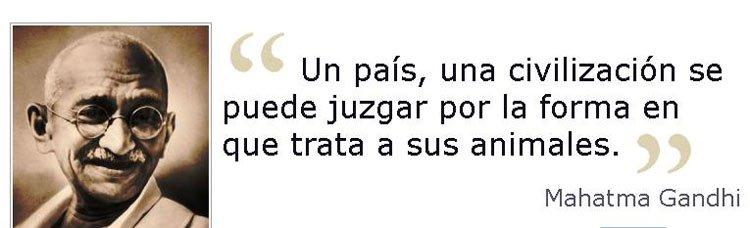 Juan Luis Ortega On Twitter Toro De La Vega Frase De