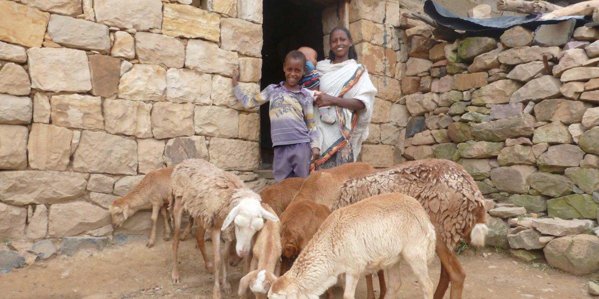 Farm Africa on Twitter:
