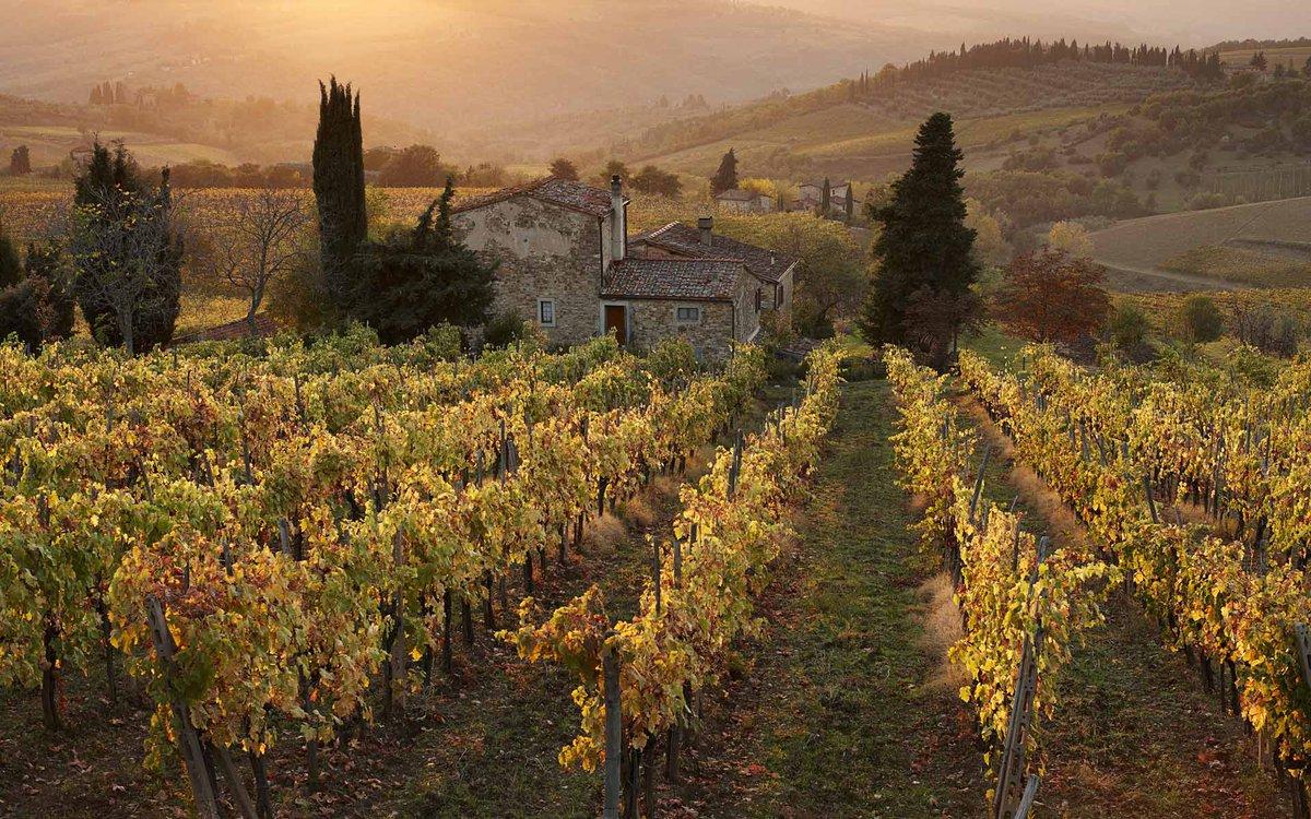 Visitare la Toscana attraverso i suoi vini
