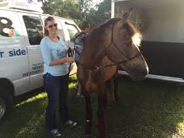 Pasco couple finds, rescues beloved horse years after being forced to part