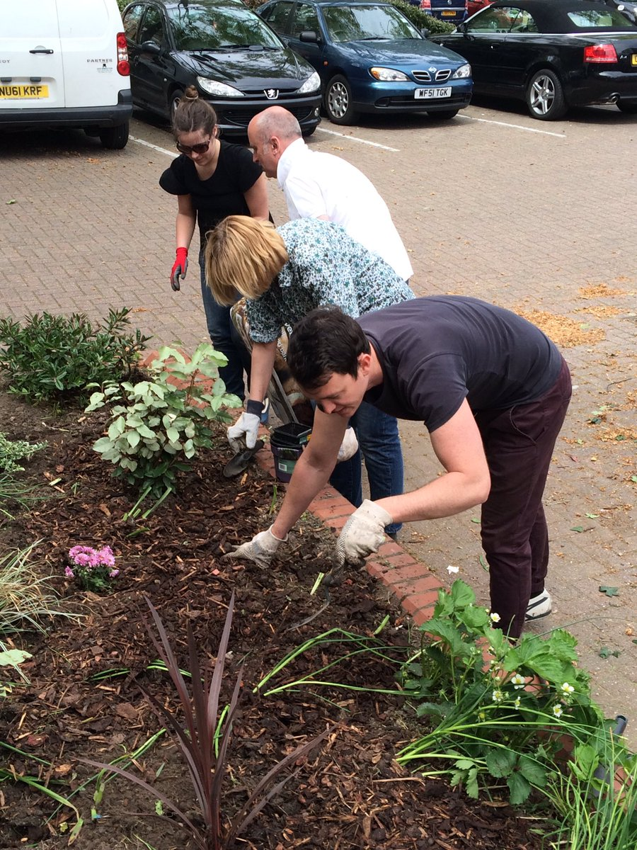 Another shot of the team in action @DoddGarden #giveandgain