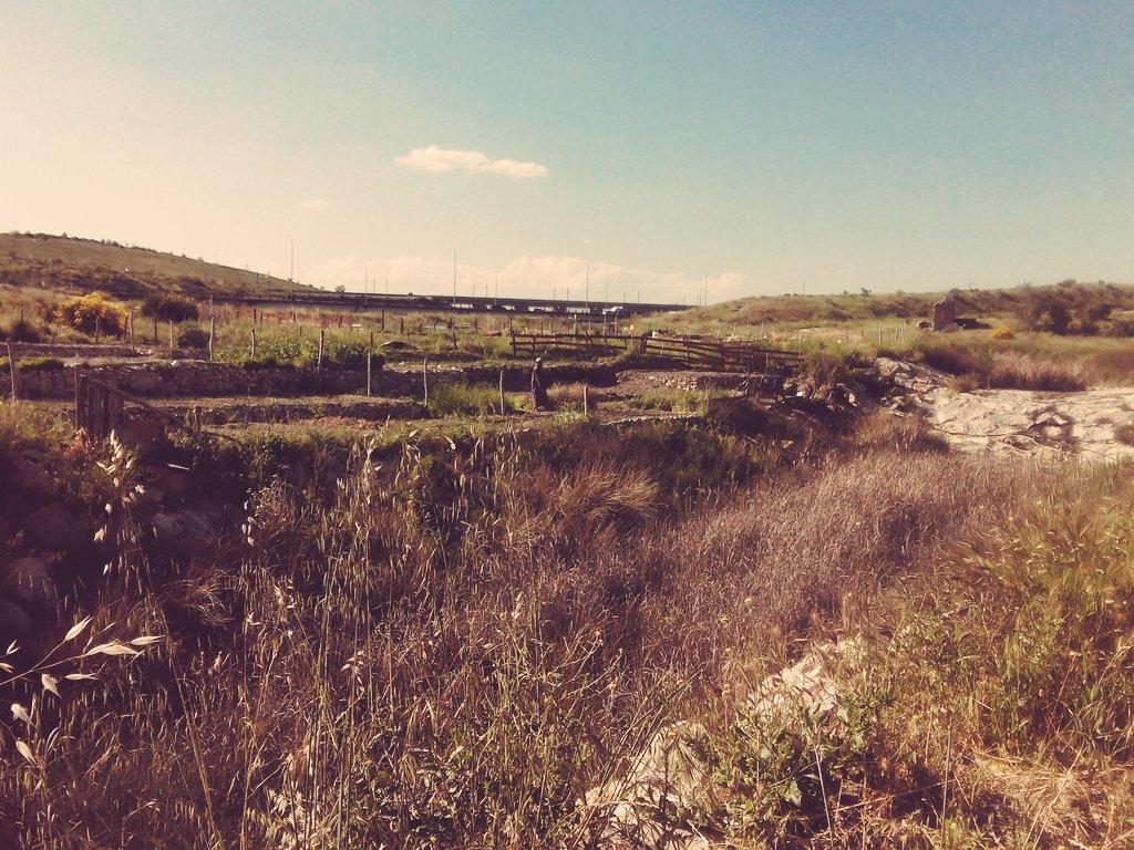 #VivimosCañada los vecinos han creado huertos de la nada. @evArganzuela @ASF_Madrid https://t.co/oZFGMa8Dv3