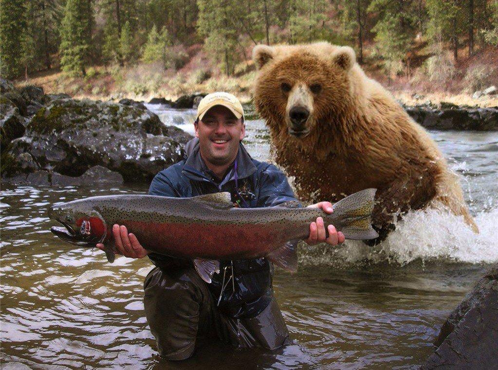 Открытки юбилеем, прикольные картинки про медвежонка на рыбалке