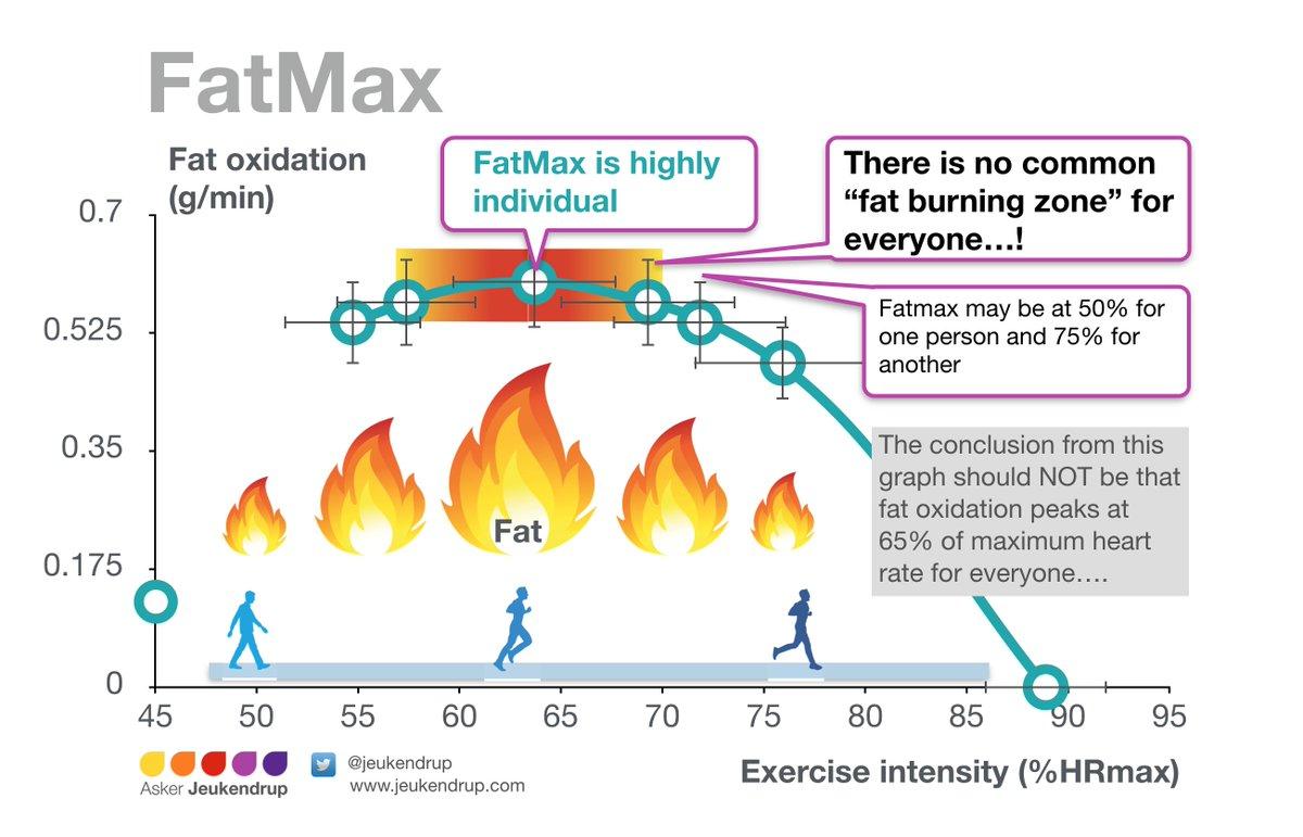 optimal fat burn hr