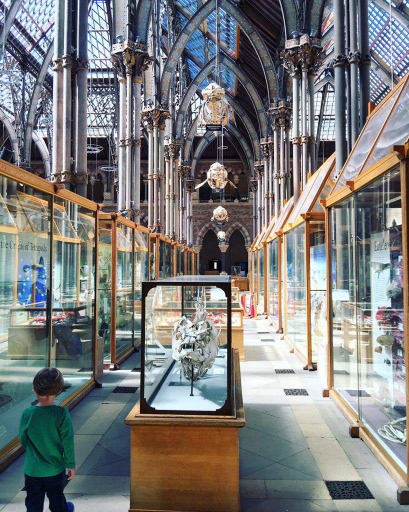 オックスフォードの自然史博物館 https://t.co/qf6C9oenUO