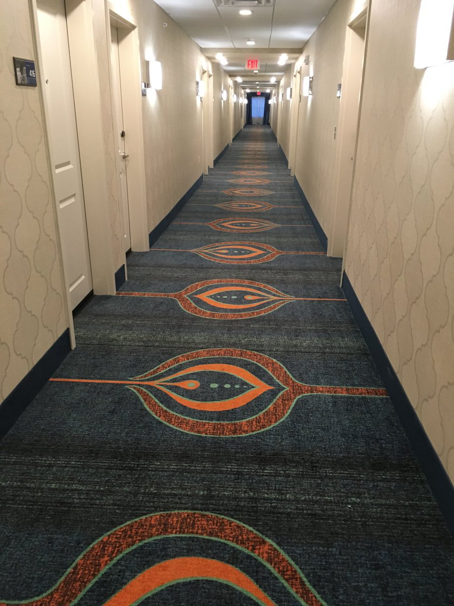 @bassnectar did you guys design this hotel carpet? @HamptonByHilton in Des Moines. https://t.co/GmqNyXm0t8