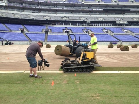 7 Things to Know About the New Turf at the Baltimore Ravens' Stadium